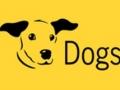 Dogs Trust Basildon