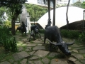 GreenBelt  Animals Sculptures