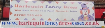 Harlequin Fancy Dress
