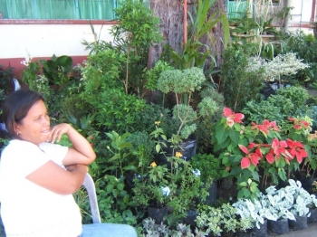 School Flower Garden Dumaguete