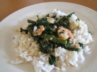 Easy Shrimp with Coconut Milk Recipe
