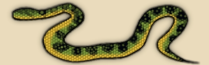 Waglers Pit  Viper Snake