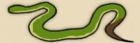 Philippine Pit Viper